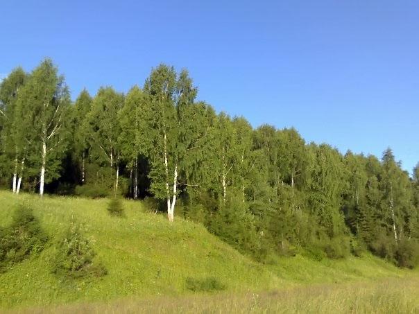 Пейзажи Чусового: Пейзажи Чусового (фотография №16)