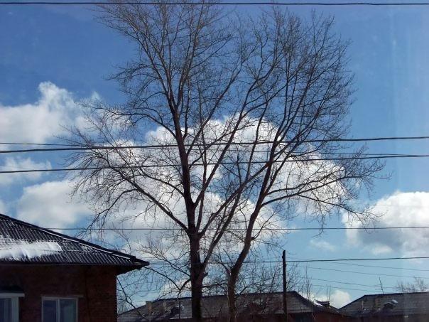 Пейзажи Чусового: Пейзажи Чусового (фотография №20)