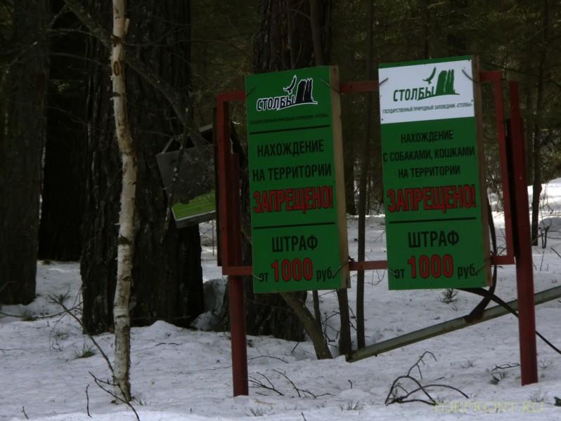 Восемь километров до Столбов: Восемь километров до Столбов (фотография №14)