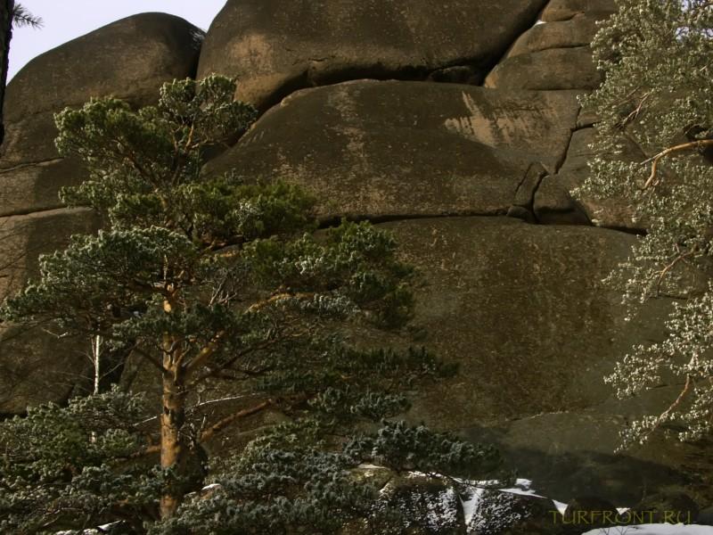 В природном заповеднике Столбы. Красноярск, апрель 2010.: В природном заповеднике Столбы. Красноярск, апрель 2010. (фотография №36)