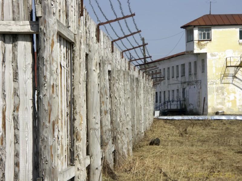 Зона-музей Пермь-36: Деревянный забор с рядами колючей проволоки сверху. (фотография №16)