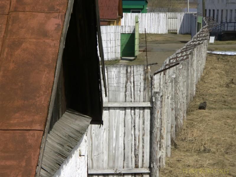 Зона-музей Пермь-36: Вид на бараки зоны с охранной вышки. (фотография №26)