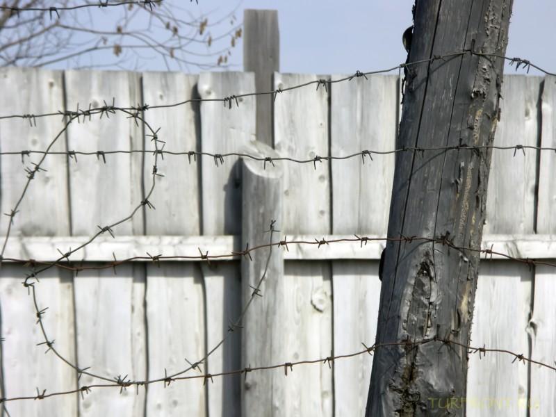 Зона-музей Пермь-36: Деревянный забор, опутанный колючей проволокой. (фотография №35)