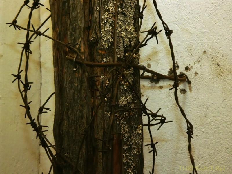 Зона-музей Пермь-36: Металлический столб, обвитый колючей проволокой. (фотография №41)