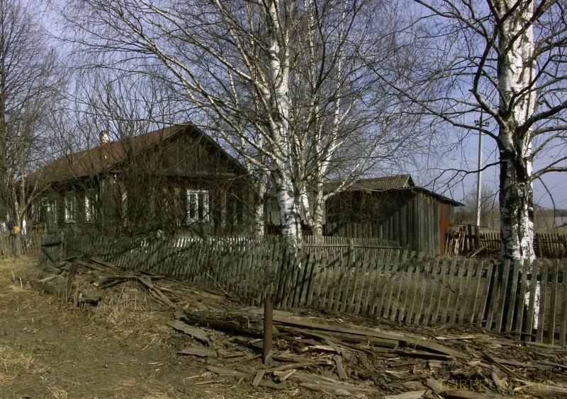 От деревни Кучино вверх до трассы: От деревни Кучино вверх до трассы (фотография №15)