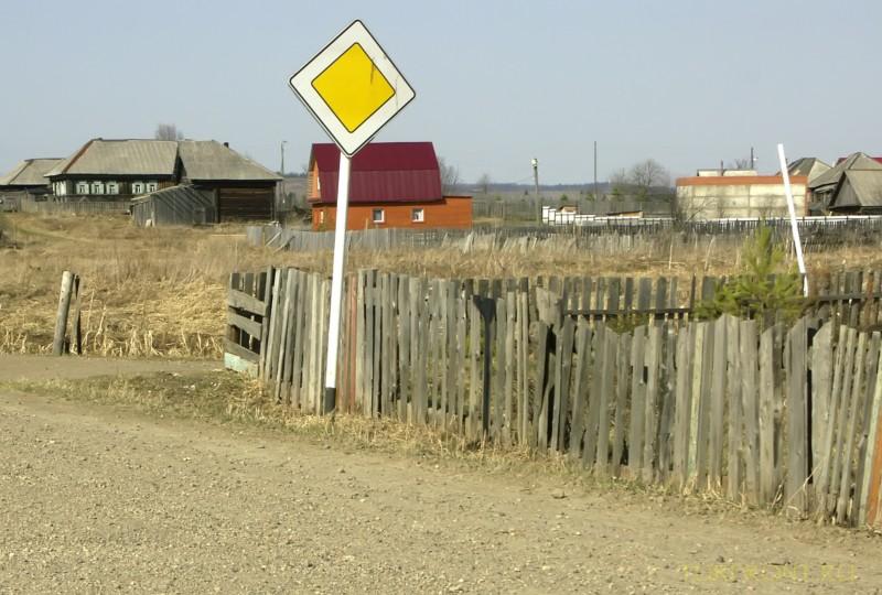 От деревни Кучино вверх до трассы: От деревни Кучино вверх до трассы (фотография №22)