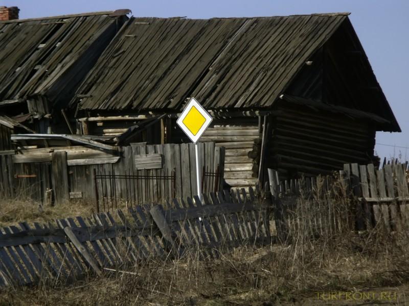 От деревни Кучино вверх до трассы: От деревни Кучино вверх до трассы (фотография №23)