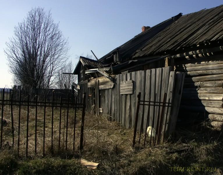От деревни Кучино вверх до трассы: От деревни Кучино вверх до трассы (фотография №24)