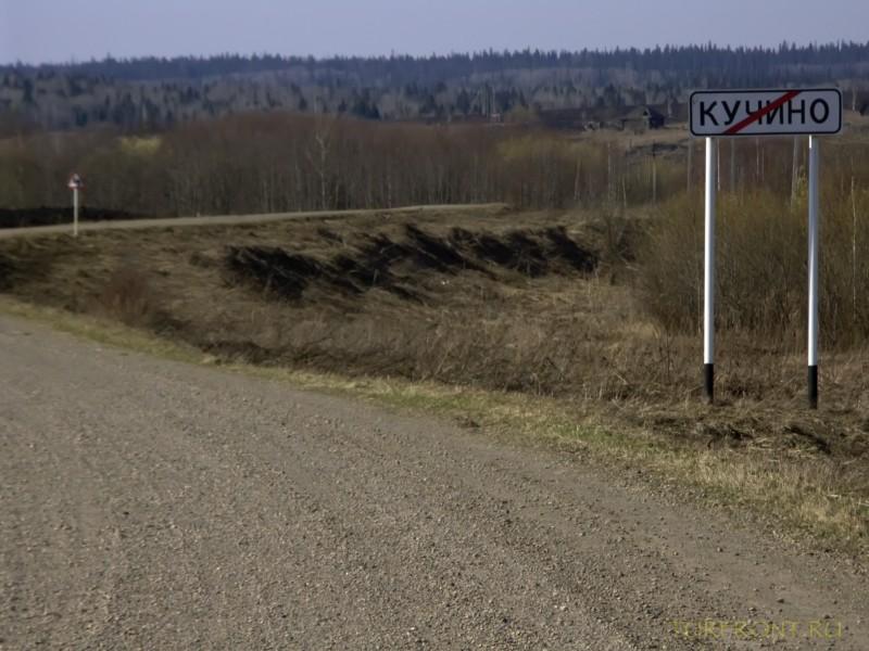 От деревни Кучино вверх до трассы: От деревни Кучино вверх до трассы (фотография №25)