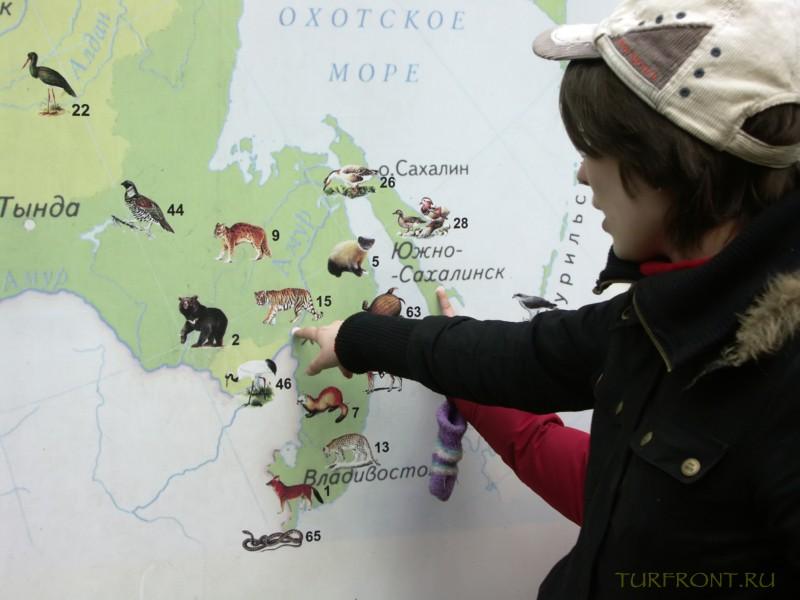 Новосибирский зоопарк: Карта-схема с указанием мест обитания видов животных в России. (фотография №29)