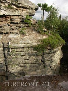 По тихим «улочкам» Каменного города: Скала в Каменном городе с березой на вершине. (фотография №1)