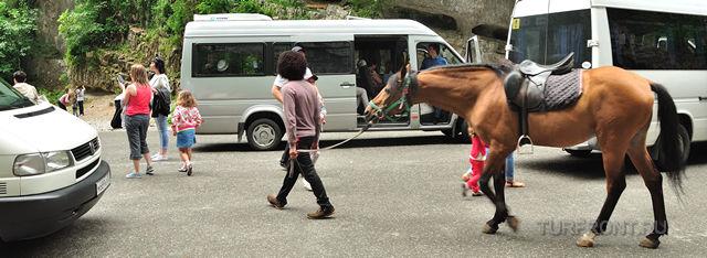 Маршрутки и лошади: в Абхазии